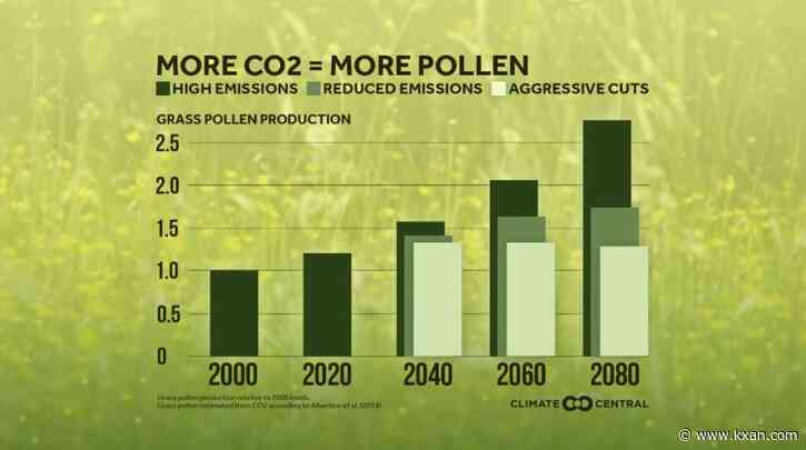 Climate change making Texas allergies worse faster than anywhere in U.S.