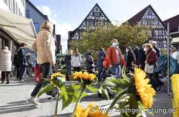 Einzelhandel Kreis Esslingen - Kirchheim übertrumpft Esslingen als Einkaufsziel - esslinger-zeitung.de
