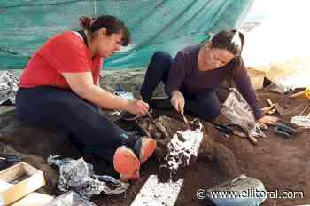 Importante hallazgo arqueológico en la ciudad de Santo Tomé - El Litoral