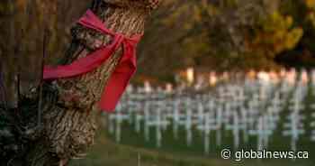 MMIWG ribbons thrown in trash in park home to Calgary's Field of Crosses