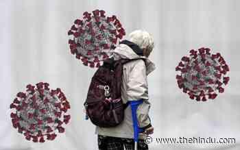 Coronavirus updates | Two samples in Karnataka found infected with Delta sub-variant AY.4.2 - The Hindu