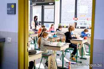 Live - Katholiek onderwijs: 'Situatie in lager onderwijs niet langer houdbaar'