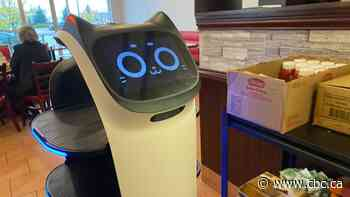 Meet the robotic cat serving diners at a Gatineau restaurant