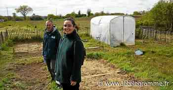 Saint-Brieuc - La Ville de Saint-Brieuc sème les graines de l'agriculture urbaine - Le Télégramme