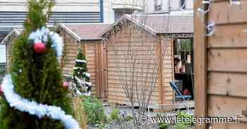 Saint-Brieuc : un appel à candidatures pour le marché de Noël - Le Télégramme