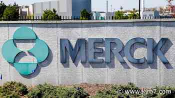 Coronavirus: Merck agrees to let other drugmakers produce its COVID-19 pill - KIRO Seattle