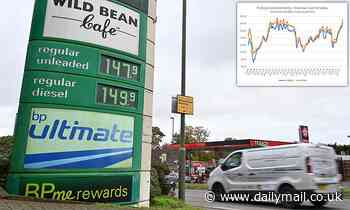 Budget 2021: Fuel duty frozen for 12th year in a row as petrol price hits new high