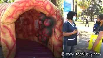 Cáncer de Colon: campaña de concientización Plaza Belgrano - todojujuy.com