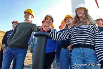 """'Vogelvriendelijk' windpark in Pelt: """"Automatisch stilgelegd als zwerm vogels in aantocht is"""""""
